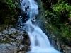 fiordland-8