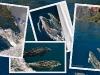 fiordland-28